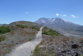 students walking along a long trail